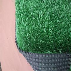 中国淘金人造草坪