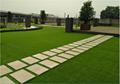 花园淡绿色人工草坪