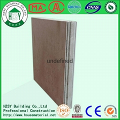 ECO-friendly EPS Light Weight EPS Cement Composite Sandwich Panel
