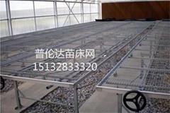 温室苗床网生产厂家河北普伦达