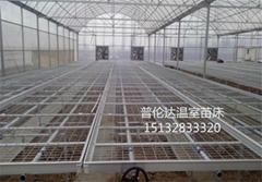 溫室苗床網片高質量高標準低價格