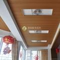 厂家供应生态木背景墙环保装饰材料 3