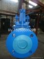 ANSI cast iron angle globe valve 2
