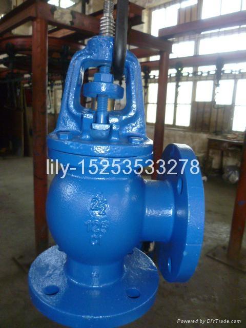 ANSI cast iron angle globe valve 4