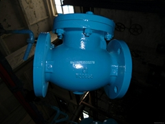 Iron Swing check valve