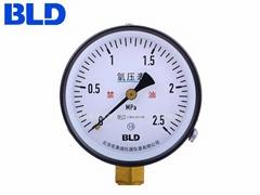 北京布萊迪BLD YO-100.AO氧壓表