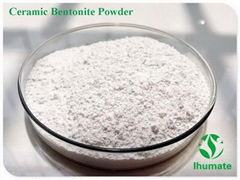 Ceramic white bentonite powder with high plastical