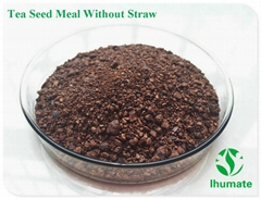 Tea seed meal for kill snail in turf