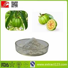 High Quality Garcinia Cambogia Powder