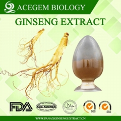 EC396 Standard Panax Ginseng extract with 20 percent ginsenosides by HPLC