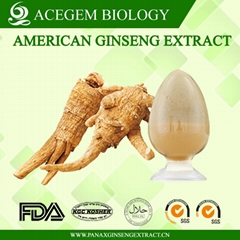 USP38 American Ginseng Root Extract with 1%-20% ginsenosides by HPLC