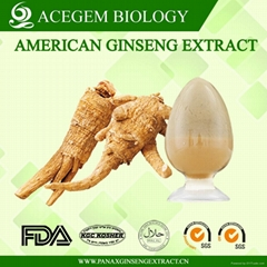 Organic American Ginseng Root Extract
