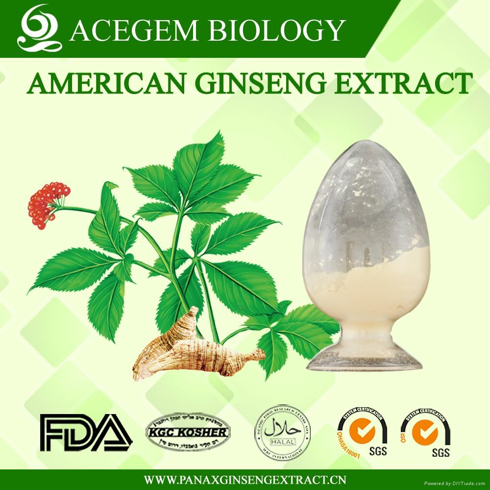 Organic American Ginseng Leaf Extract 1