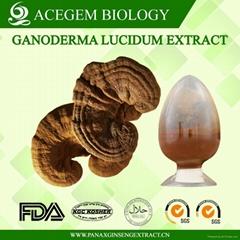 Organic Ganoderma Lucidum Extract
