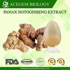 Panax Notoginseng Extract