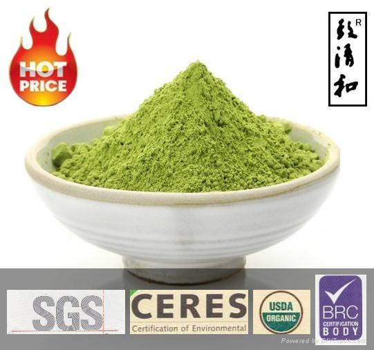 Free Sample Instant Organic Matcha Green Tea Powder 1