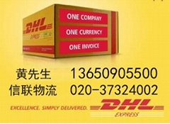 白云区新市DHL电话DHL快递020-3732-4002