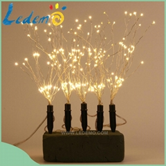 LED Christmas decoration outdoor use copper wire insert light