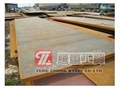 日本JFE-EH450耐磨钢板