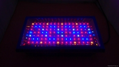 OHMAX High Quality Growth Platform Panel LED Grow Light for medicinal Plant
