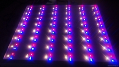 OHMAX Dimmable Spectrum Adjustable LED Grow Lights for Space Station
