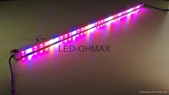 OHMAX 36x1W Waterproof IP65 LED Tube Plant Grow Light for Marijuana