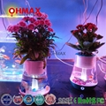 Mini Smart Aquaponics Aquarium Self-cleaning Fish Tank With LED Light and Plant  2