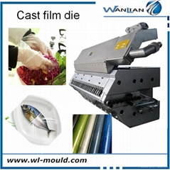 multi-layer casting film extrusion die for PVC PP PET LDPE film