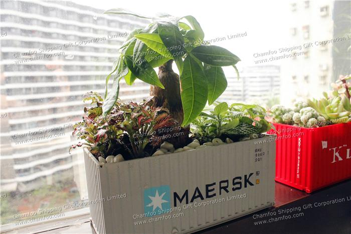 Maersk Container Flower Pot|Potted Container|Bonsai Container 2