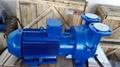 西門子2BV系列液環真空泵