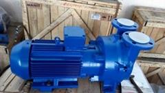 西门子2BV系列液环真空泵