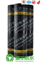 (APP/SBS) Modified Bituminous Waterproof Membrane
