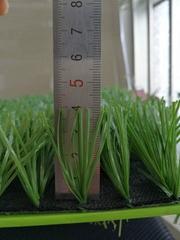 12000D artificial grass,45mm.50mm.60mm Height