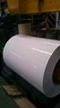 PPGI PPGL coils steel sheet steel coil