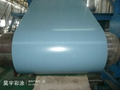 Color coated steel coil importer prepainted ga  anized steel coils 3