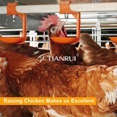 layer chicken house used automatic poultry nipple drinker