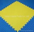 training grappling eva foam mats