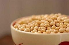 黄豆制品 土特产健康食品系列