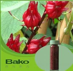 廣東玫瑰茄提取物廠家,巴科醫藥