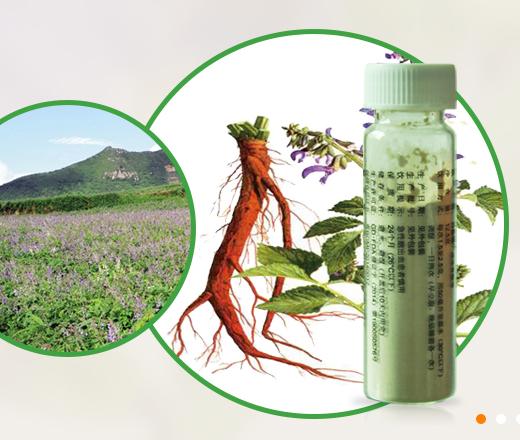 廣州丹參提取物價格,零添加純植物提取丹參提取物,巴科醫藥 1