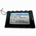 Customized Li-ion Battery Pack