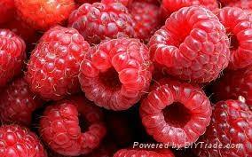 Red Raspberry 1