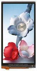 4.66inch TFT LCD Display with 720X 1280 Resolution Mipi Interface
