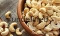 Raw cashew nuts/ Cashew Kernels/ WW320
