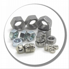 stainless steel hex standard nut