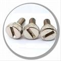 special screw bolt