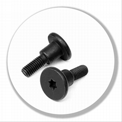 Special screw with grooved