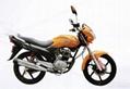 氣派125 cc/150cc