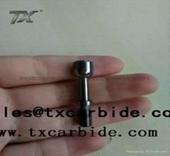 To figure custom carbide profiled piece
