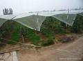 White Anti Hail Net
